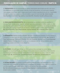 dra-anaflavia-blog-evelize-bratfisch-formulacao-xampu-termos-mais-comuns-parte01 (1)